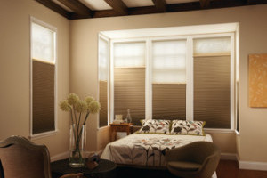 Motorization for Brazos Valley Window Treatments