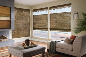 motorized window shades and blinds
